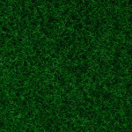 19 Vert Bouteille