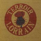 Tapis brosse strié LOGO usage intensif (alternative tapis coco)
