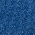 C22 Cobalt Blue