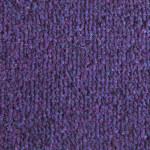 C31 Purple